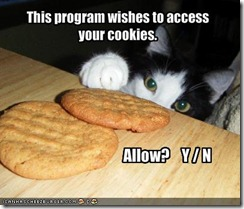 funny-pictures-cat-wishes-to-access-your-cookies